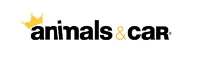 ANIMALS & CAR